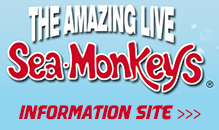 Sea Monkeys Info Site