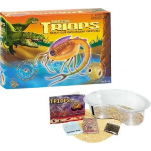 Triassic Triops Starter Kit
