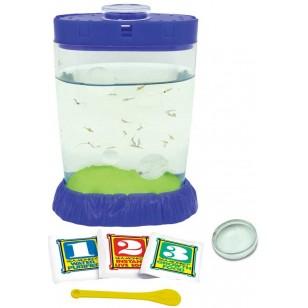 Sea-Monkeys Magiquarium Kit